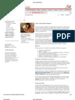 desarrollo endogeno PDVSA