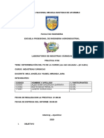 informe N 3 carnicas.docx