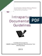 Documentation Guidelines_ 2013 FINAL