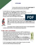 chimie_organique.pdf