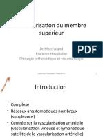 Vascularisation MS