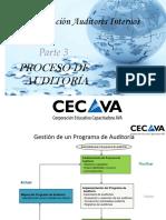 TEMA-2.3.-el-proceso-de-auditoria.pdf