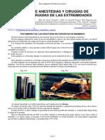 108-Manual_anestesias.pdf