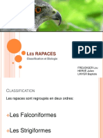 RAPACES.pdf