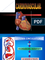 APARATO CIRCULATORIO.ppt