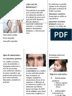 Las mutaciones folleto