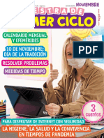 261 Mpc Revista noviembre 2020.