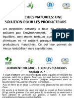Formation_Pesticides_naturels_Green_Cross_Burkina_Faso