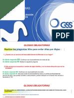 VALIDACION DE GLOSAS OBLIGATORIAS - C2C (1)