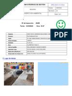 REPORTE_INSP_ENEL_29455 (1)