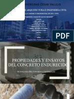 PROPIEDADES Y ENSAYOS DEL CONCRETO