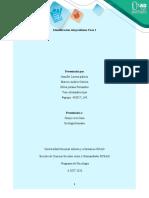 Fase 1-identificacion del problema-GC140