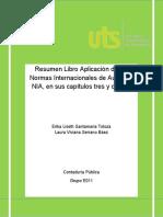 Resumen Libro Aplicación de las Normas Internacionales de Auditoria NIA