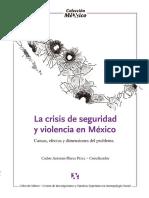 La crisis de seguridad y violencia en México