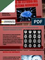 Métodos de estudio del sistema nervioso.pptx