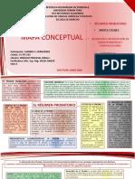 Act 4 DPP Intensivo Mapa Conceptual Carmen Hernandez.pptx
