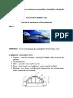 Elemente Realizare Constructii1