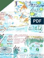 Delta carte pt copii
