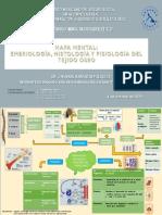 Anatomia, Embriologia y Fisiologia osea