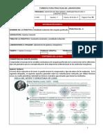 6. MODELADO MOLECULAR DEL CASQUETE PERFORADO (2)