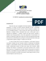 Trabalho de Literatura Brasileira II.docx
