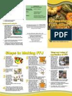 FFJ.pdf
