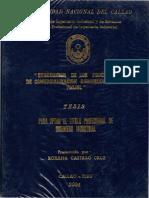 CASTILLO CRUZ_PREGRADO_2004 (1).pdf