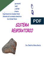 sistemarespiratorio-111004162029-phpapp02.pdf
