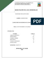 Informe N_9.pdf