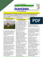 NEWS-2008-11