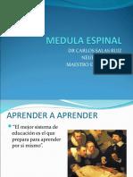 MEDULA-ESPINAL-anatomia