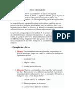 TIPOS DE RELIEVES 4