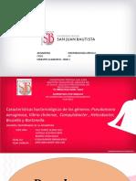9 SEMANA TEORIA MICROBIOLOGIA.pdf