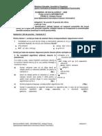Varianta 11 - Subiecte informatica intensiv Pascal Bacalaureat 2008