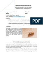 Guía CN 8º - 4° periodo