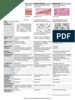 Cuadro comparativo - Tejido muscular (1) (3)
