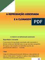 Clonagem (5º)