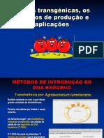 Plantas transgénicas, os  métodos de produção e.ppt