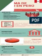Infografia Perú (3)