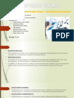 Biodisponibilidad y bioequivalencia-exposicion - Biofarmacia..pptx