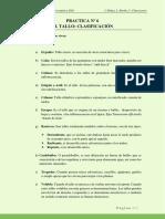 Practica Nº 6 Clasificacion del Tallo 22 10 2020.pdf