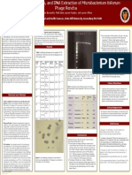 phage poster