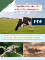 3. Sistema Digestivo Animais.pdf