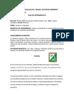 GUIA DE APRENDIZAJE 8 GRADO 9.pdf