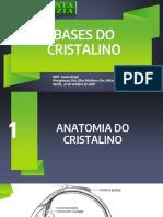 Bases do Cristalino - Luana Braga - Bloco de Catarata.pdf