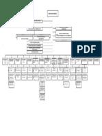modelo organigrama2