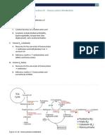 Metabolism+Section+XV+-+Homocysteine+Metabolism