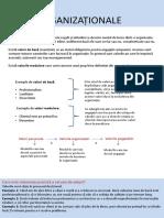 Valori organizationale