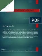 Lições de Direitos Humanos-1