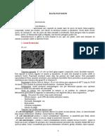 S27, S28, S29 - Bacilii patogeni